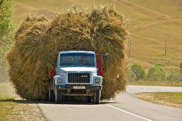 Мастер-класс «Как избежать штрафов за перегруз транспортного средства»